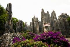 Foresta della pietra di Shilin - Kunming - Cina immagini stock
