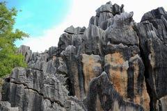 Foresta della pietra di Shilin a Kunming il Yunnan Fotografie Stock