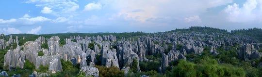 Foresta della roccia granitica caolinizzata Fotografie Stock