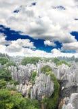 Foresta della roccia vicino alla città di Kunming Immagine Stock Libera da Diritti