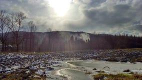 Foresta delle montagne degli alberi del sole di inverno del tempo della natura Fotografie Stock Libere da Diritti