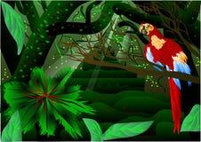 Foresta di Amazon royalty illustrazione gratis