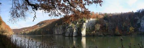 Foresta di Autum con il Danubio Immagine Stock
