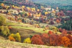 Foresta di autunno in Bulgaria fotografia stock libera da diritti