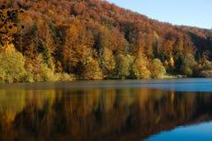 Foresta di autunno con la riflessione nella Lac de Lucelle svizzera Immagini Stock Libere da Diritti
