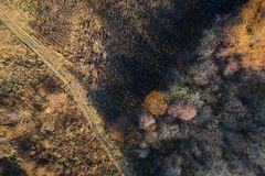 Foresta di autunno con una strada Fucilazione ad alta altitudine da un fuco immagine stock