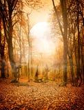 Foresta di autunno e la luna Fotografia Stock