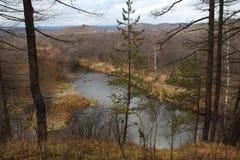 Foresta di autunno ed il piccolo fiume di Kizil nella località di soggiorno di Abzakovo, Russia immagine stock libera da diritti
