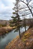Foresta di autunno ed il piccolo fiume di Kizil nella località di soggiorno di Abzakovo, Russia fotografia stock libera da diritti