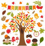 Foresta di autunno, insieme, icona, pittogramma, vektor fotografia stock libera da diritti
