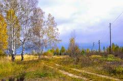 Foresta di autunno. La Russia Fotografie Stock Libere da Diritti