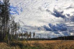 Foresta di autunno. La Russia Fotografia Stock Libera da Diritti
