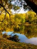 Foresta di autunno riflessa sull'acqua Fotografia Stock Libera da Diritti