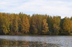 Foresta di autunno sulla banca opposta del fiume Fotografie Stock