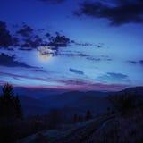 Foresta di conifere su un pendio di montagna ripido alla notte Immagini Stock Libere da Diritti