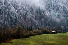 Foresta di Geroldsee durante il giorno di autunno con prime neve e nebbia sopra gli alberi, alpi bavaresi, Baviera, Germania Fotografia Stock Libera da Diritti