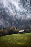 Foresta di Geroldsee durante il giorno di autunno con prime neve e nebbia, alpi bavaresi, Baviera, Germania Immagini Stock Libere da Diritti