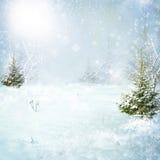 Foresta di inverno con neve illustrazione di stock