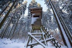 Foresta di inverno con un alto sedile Immagine Stock