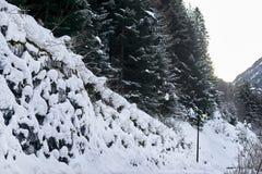 Foresta di inverno coperta da neve bianca fresca, alpi del Tirolo Fotografia Stock