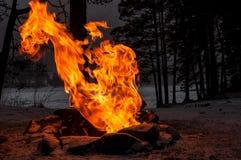 Foresta di inverno della fiamma del falò Immagini Stock Libere da Diritti