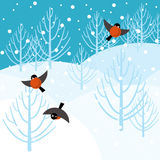 Foresta di inverno di vettore Fotografia Stock