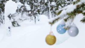 Foresta di inverno e palle di Natale sull'abete video d archivio