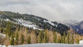 Foresta di inverno nelle alpi della montagna video d archivio