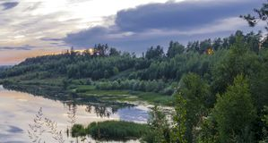 Foresta di notte di mattina del lago Fotografia Stock