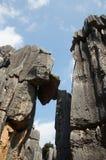Foresta di pietra Fotografie Stock Libere da Diritti