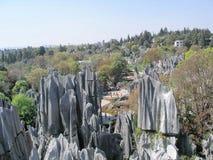 Foresta di pietra Immagine Stock Libera da Diritti