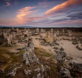 Foresta di pietra al tramonto Immagine Stock Libera da Diritti