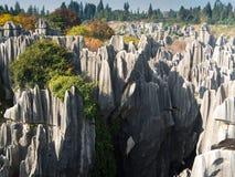Foresta di pietra di Shilin Fotografia Stock Libera da Diritti