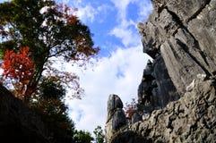 Foresta di pietra in yunnan Fotografie Stock