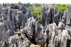 Foresta di pietra, Yunnan, Cina Immagine Stock