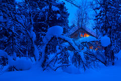 Foresta di Snowy e le luci del cottage Fotografia Stock Libera da Diritti