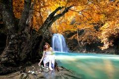 Foresta di sogno Fotografie Stock