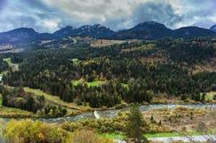 Foresta e fiume alpini Fotografie Stock
