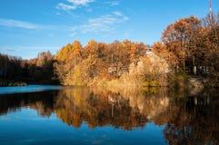Foresta e fiume di autunno Fotografie Stock