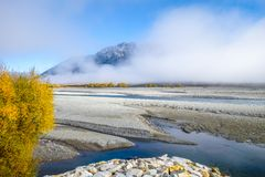 Foresta e fiume gialli in montagne della Nuova Zelanda Immagine Stock Libera da Diritti