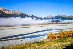 Foresta e fiume gialli in montagne della Nuova Zelanda Immagine Stock