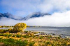 Foresta e fiume gialli in montagne della Nuova Zelanda Fotografie Stock Libere da Diritti