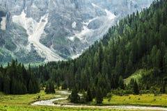 Foresta e fiume nella valle, Dolomiti - Italia Immagine Stock