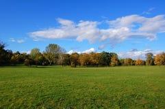 Foresta e giardino sotto cielo blu alla caduta Fotografia Stock