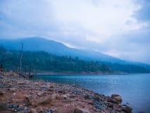 Foresta e lago Immagini Stock Libere da Diritti