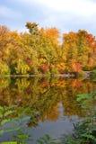 Foresta e lago di autunno Fotografia Stock Libera da Diritti