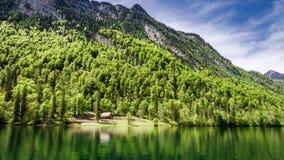 Foresta e lago Konigssee nelle alpi tedesche Fotografia Stock