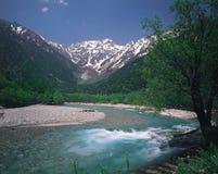 Foresta e montagna fotografie stock