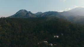 Foresta e montagna aeree video d archivio
