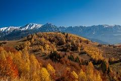 Foresta e montagna di autunno Immagine Stock